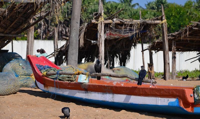 pêcheurs 1 (19)