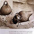 P. 78-80 タマコガネ類 les scarabées