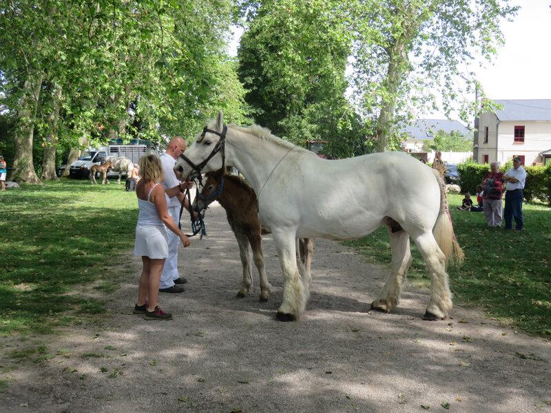 Salsa du Bois Hure - 2 Juin 2019 - Local de Rue (80) - 3e (Suitées)