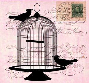 vintage-birds-cage-script