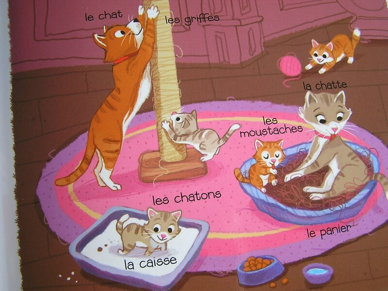 chat famille