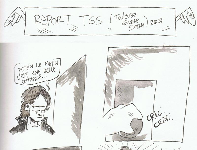 Reporttgs11