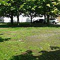 Espaces verts de la brouck : un effort de la commune ?