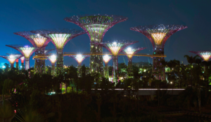 gardens-by-the-bay-Singapour