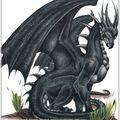 1er mai: beltane, fête de bélénos, et bélissama, roodmas et setsamhain, fête de nerthus et de tous les dieux nordiques,