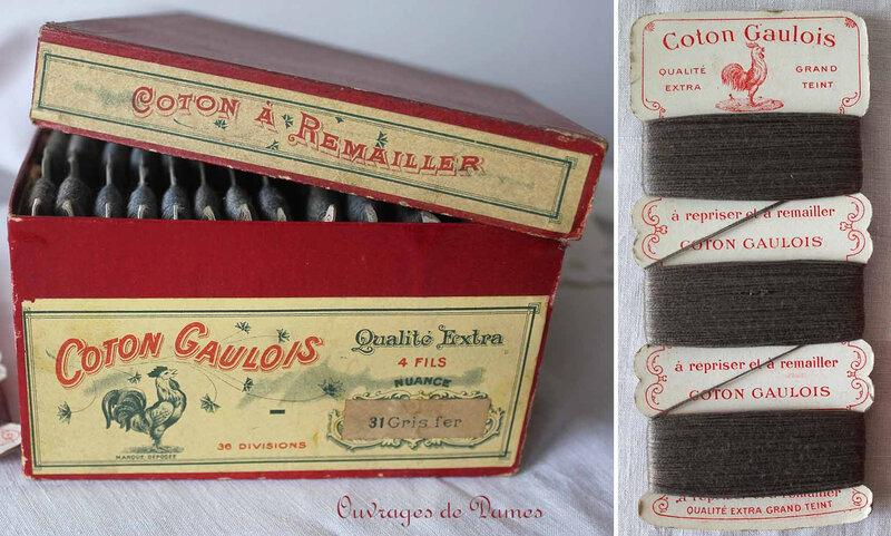 Coton gaulois