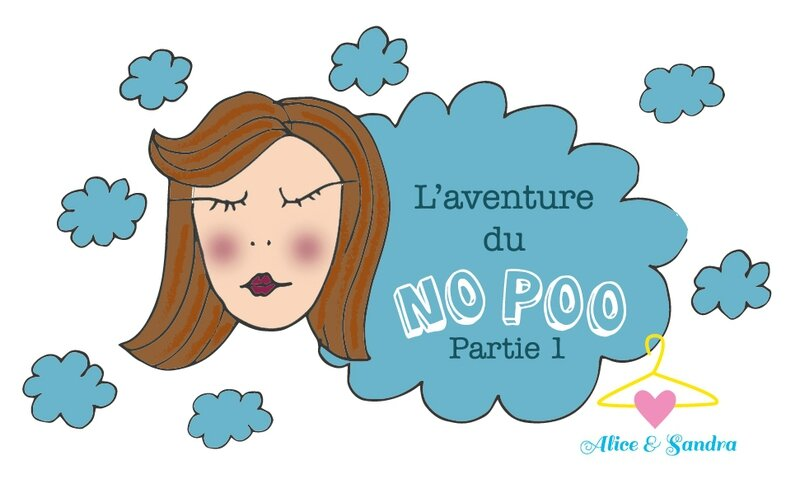 no-poo-01-blog-alice-sandra