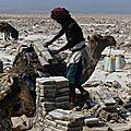 Ethiopie - dépression du danakil - découverte du site d'extraction du sel