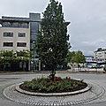 Rond-point à molde (norvège)