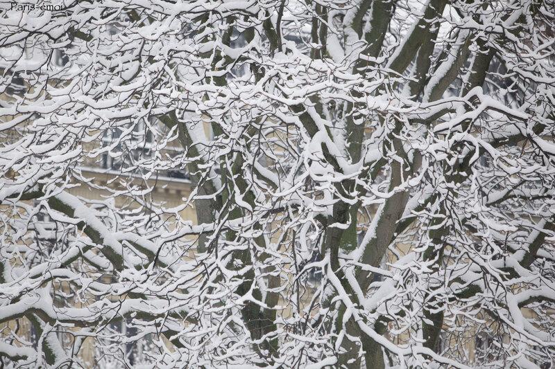 neige epinettes 0923nA