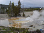 18_Jun_04___Yellowstone__Norris_geyser_basin_4