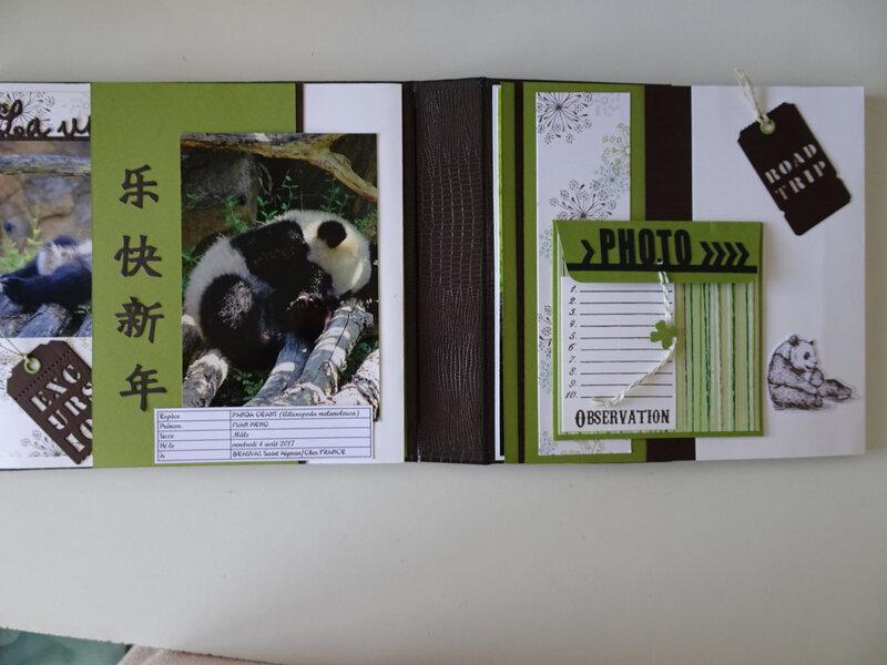 18i MA Panda