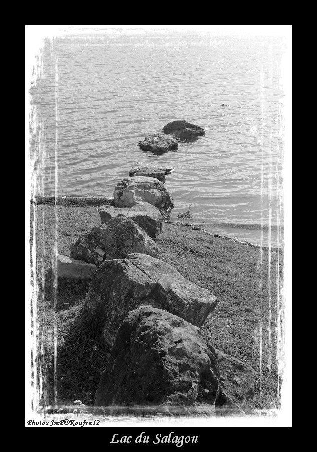 Photos JMP©Koufra 12 - Lac Salagou - 11032018 - 014-2
