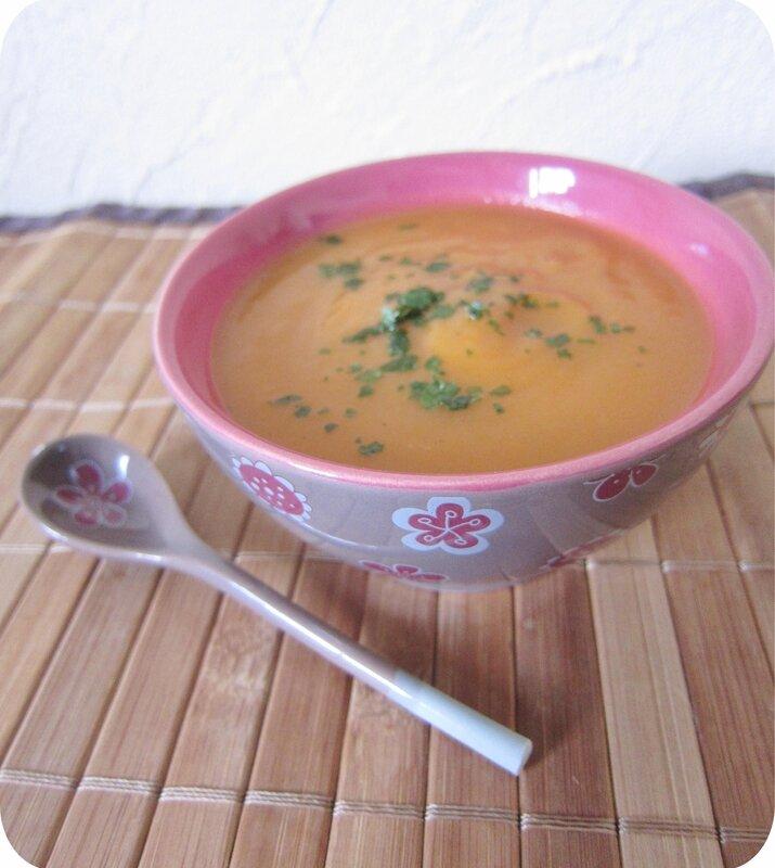soupe carottes panais (scrap2)