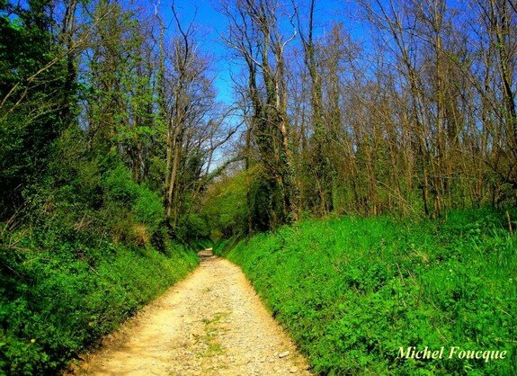 911) descente fin chemin Poursillan