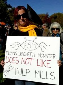 fsm_pulp_mills_tasmanie