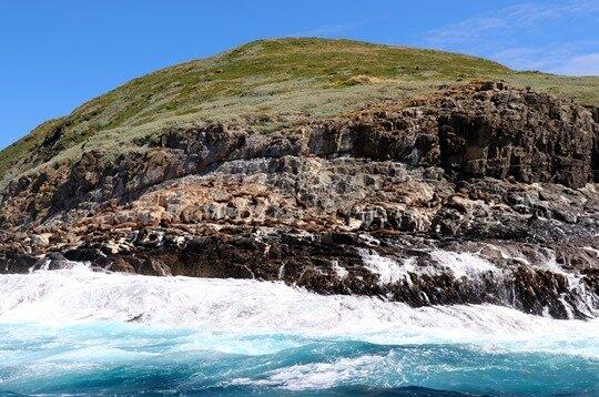 Bruny island23