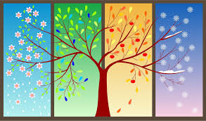 Lets talk about the seasons - Life skills Gr 1-2 — Steemit