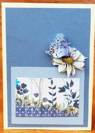carte-papillon-3D