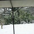 Chute de neige et avalanche de photos