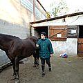 Equitation cet après midi au club hippique de gouvernes