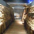 Visite de l'expo 1914-2014, c'est notre histoire