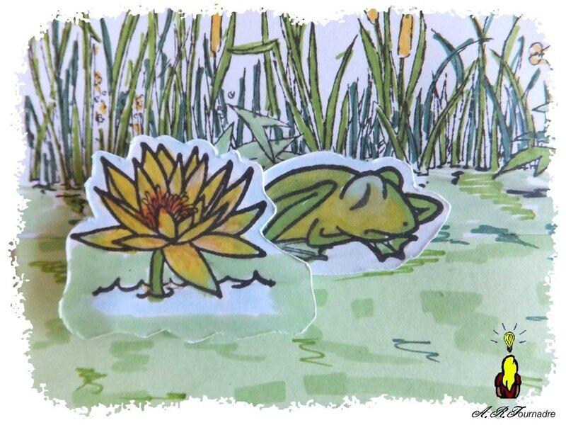 ART 2017 05 mare aux grenouilles 4